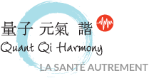 Logo Quant Qi Harmony